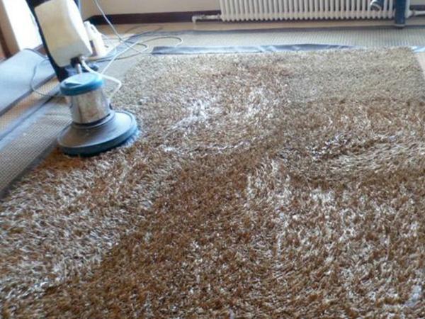地毯养护清洗